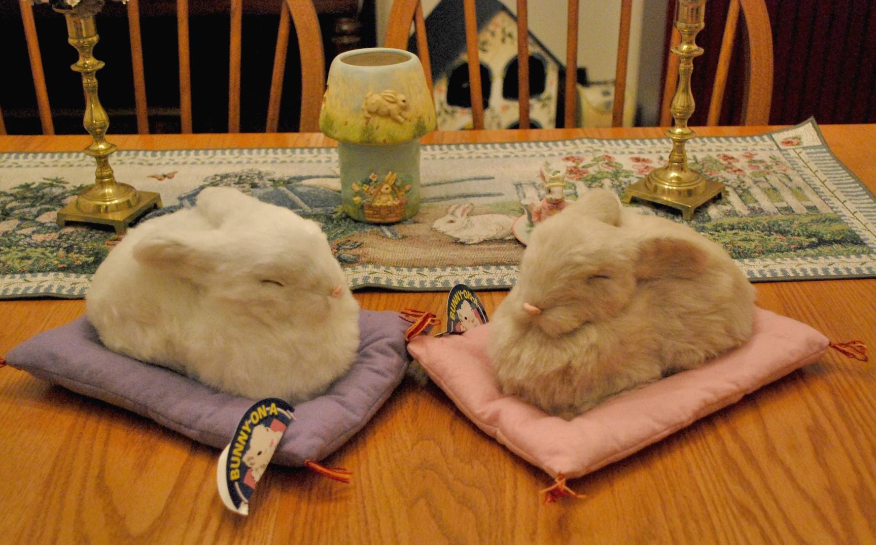 Bunnyrabbit Com Bunny Pillow Rabbit Pillow Bunnyrabbit